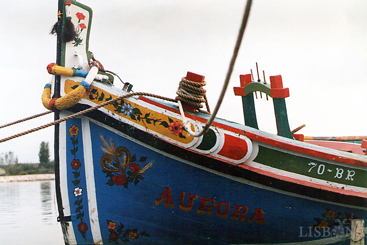 Traditional Boats of the Tagus River - Aurora