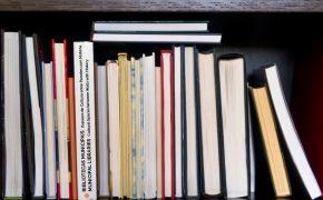 5 Bibliotecas Municipais, Espaços de Cultura entre Paredes com História