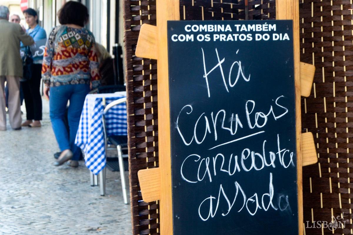 """Cartaz improvisado """"Há Caracóis"""""""