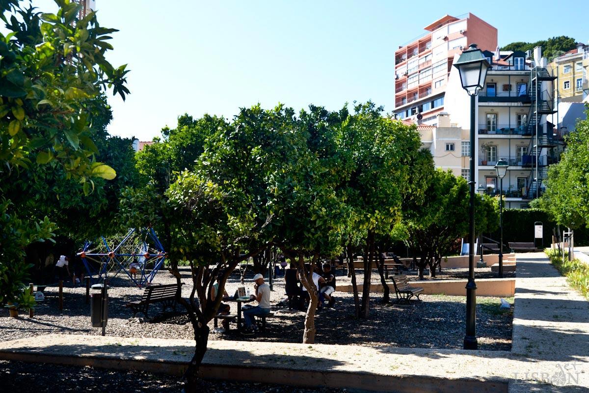 Garden of Cerca da Graça
