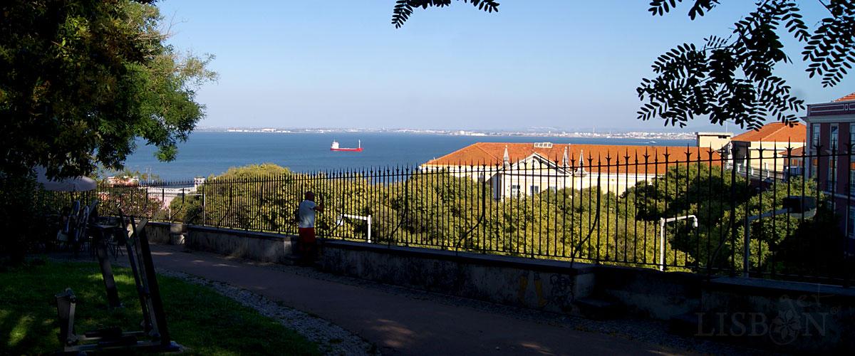 Botto Machado Garden