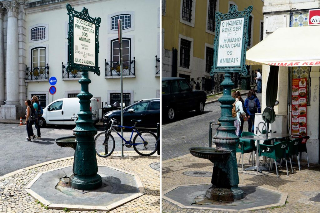 """Fountain-drinking troughs in Santa Apolónia """"Sociedade Protectora dos Animais founded in 1875. Donated to the society by Júlio D'Andrade"""" """"Man must be compassionate and humane towards animals"""""""