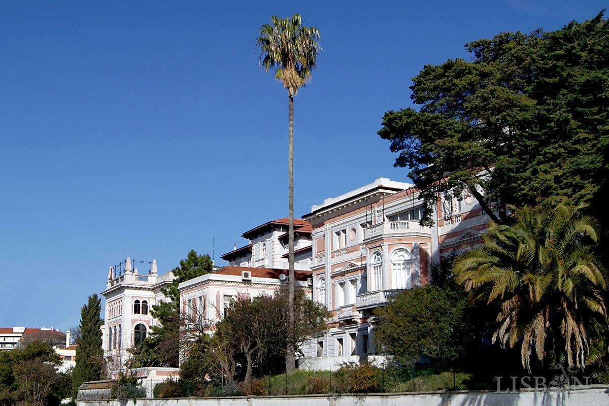 Vista dos palacetes a partir do Jardim do Torel