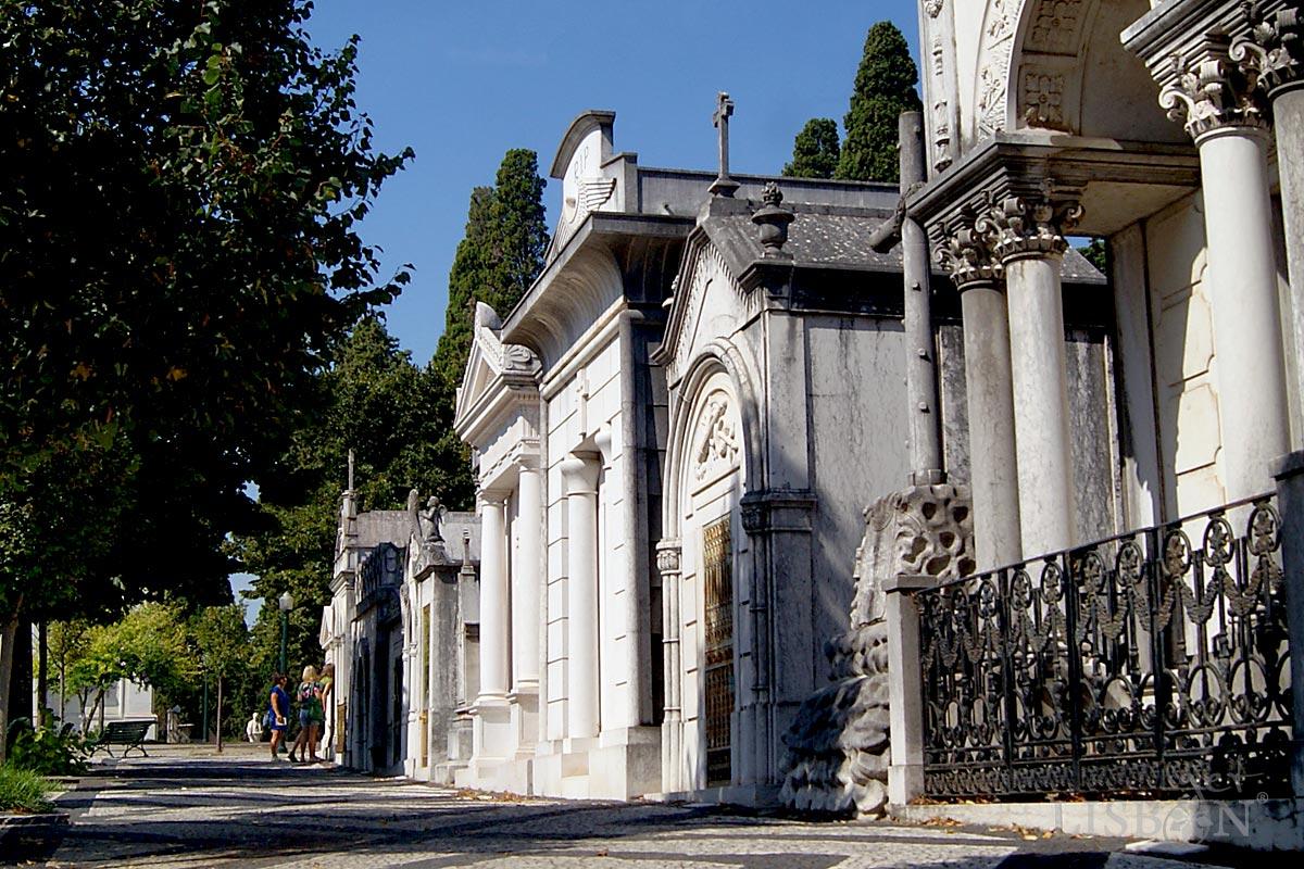 Historic Cemetery: Prazeres Cemetery