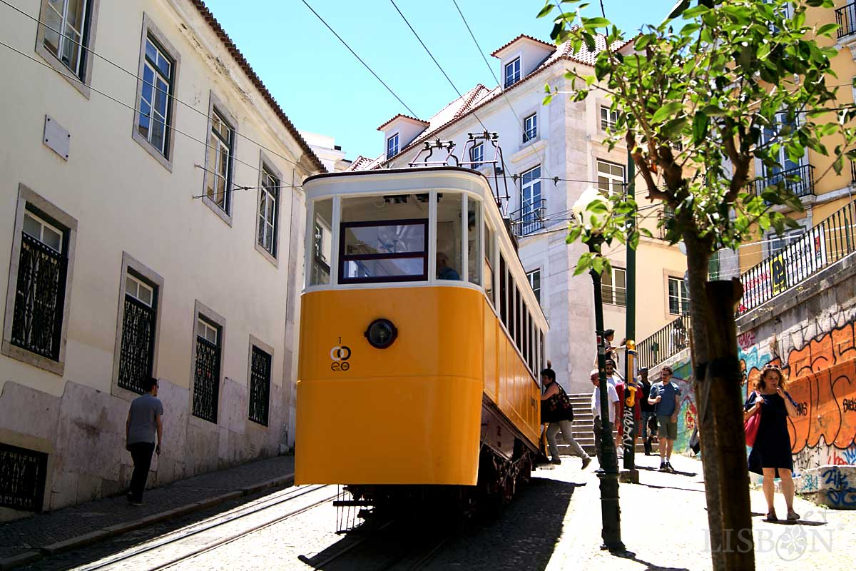 Lifts and Funiculars of Lisbon: Glória Funicular, 2018