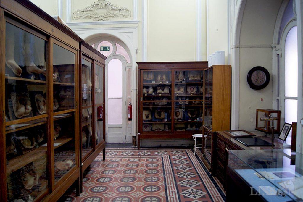 Salão Nobre do Hospital dos Capuchos onde se conserva a Colecção de Dermatologia