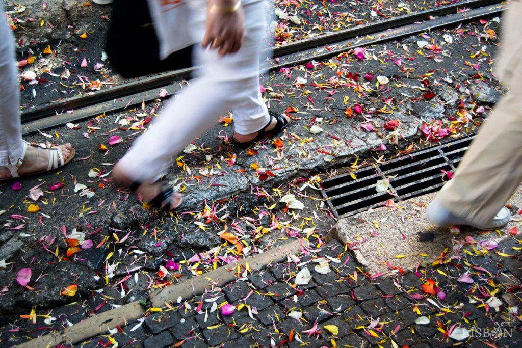 Os populares lançam pétalas de flores à passagem da Procissão de Santo António de Lisboa