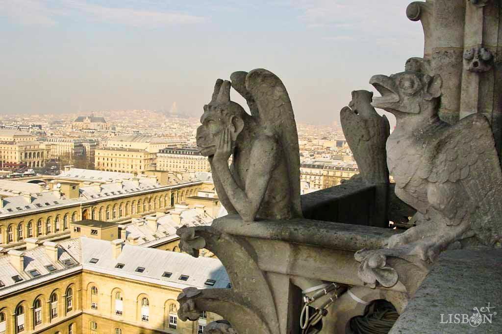 Gárgulas da Catedral de Notre Dame,Paris (2005). As gárgulas são elementos escultóricos que geralmente apresentam formas zoomórficas ou antropomórficas.