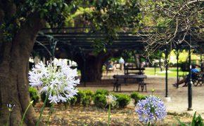 O Jardim do Príncipe Real, Atracções e Curiosidades