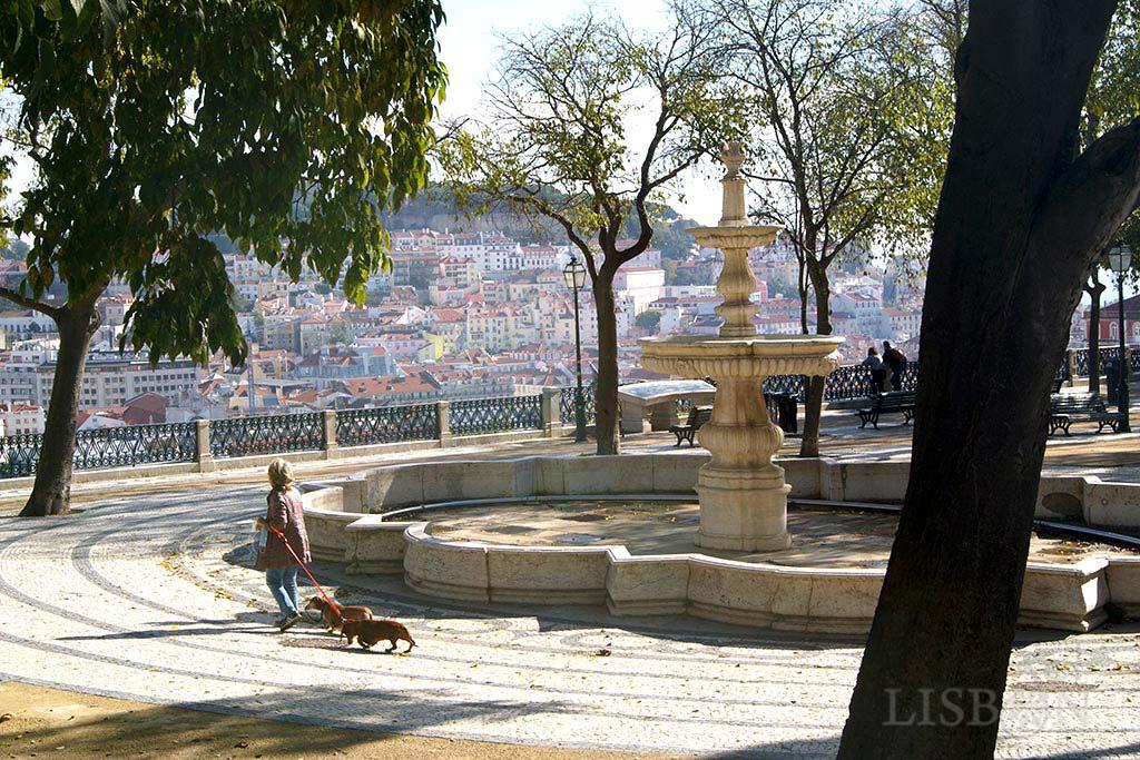 Patamar superior do Jardim de São Pedro de Alcântara