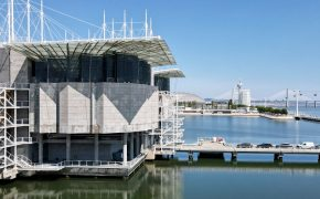 The Lisbon Aquarium, more than an Underwater Journey